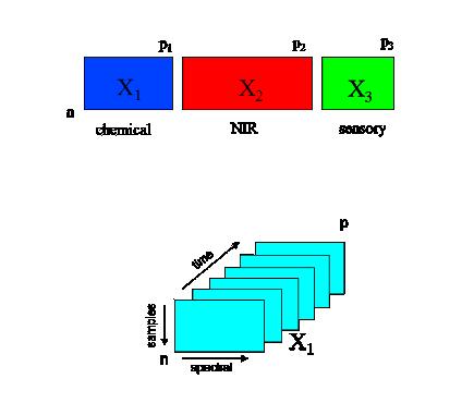 Formation à l'analyse de données multi-blocs