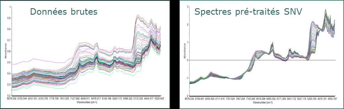 Pré-traitements spectroscopiques